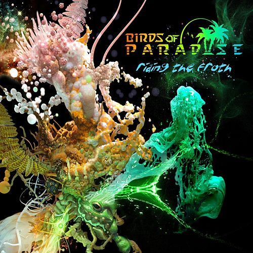 Play & Download Riding the Froth by The Birds Of Paradise | Napster