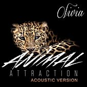Play & Download Animal Attraction (Acoustic Version) by Olivia | Napster