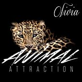 Animal Attraction by Olivia
