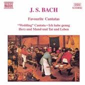 Favourite Cantatas by Johann Sebastian Bach