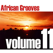 African Grooves Vol.11 by Various Artists