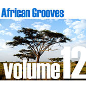 African Grooves Vol.12 by Various Artists