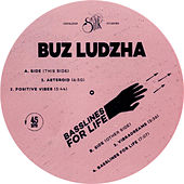 Basslines for Life by Buz Ludzha