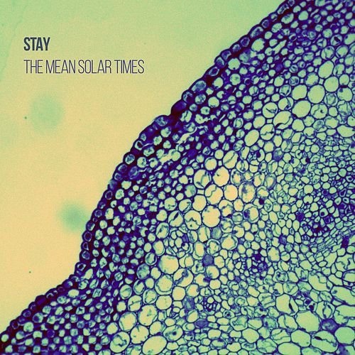 Play & Download The Mean Solar Times by Stay | Napster