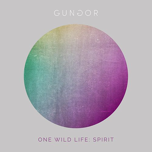 Play & Download One Wild Life: Spirit by Gungor | Napster