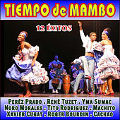 Play & Download Tiempo de Mambo by Various Artists | Napster