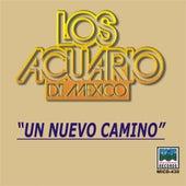 Play & Download Un Nuevo Camino by Los Acuario De Mexico | Napster