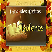 Grandes Éxitos Boleros von Various Artists