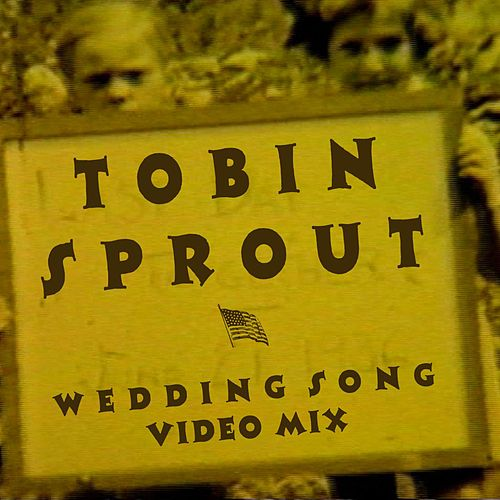Play & Download Wedding Song (Video Mix) by Tobin Sprout | Napster