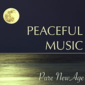 Play & Download Peaceful Music – Pure New Age Music for Soul Healing, Yoga Class, Relaxation & Meditation by Sounds of Nature White Noise for Mindfulness Meditation and Relaxation BLOCKED | Napster