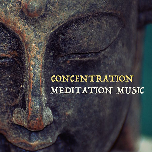 Play & Download Concentration Meditation Music: Best Songs to Stay Focused and Concentrated at Work, Soothing Music for Relaxation and Free Your Mind by Relax | Napster