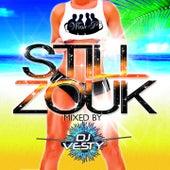 Still Zouk (Instrumental) by Various Artists