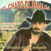 Te Hable Con El Corazon by El Chapo De Sinaloa