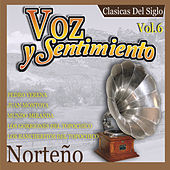 Voz y Sentimiento Norteno, Vol. 6 by Various Artists