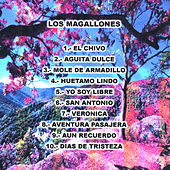 Play & Download 10 Canciones by Los Magallones | Napster