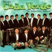 Play & Download El Puno De Tierra by Banda Cana Verde | Napster