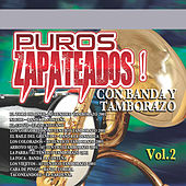 Zapateados Con Banda y Tamborazo, Vol. 2 by Various Artists