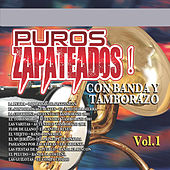 Play & Download Puros Zapateados Con Banda y Tamborazo, Vol. 1 by Various Artists | Napster