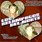 Play & Download Por El Amor A Mi Madre by Los Relampagos Del Norte | Napster