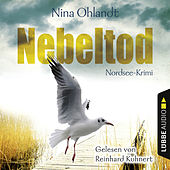 Nebeltod - John Benthiens dritter Fall. Nordsee-Krimi von Nina Ohlandt