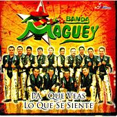 Play & Download Pa Que Veas Lo Que Se Siente by Banda Maguey | Napster