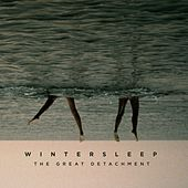 The Great Detachment by Wintersleep