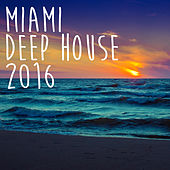 Play & Download Miami Deep House 2016 by Various Artists | Napster