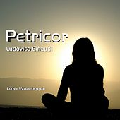 Play & Download Petricor (Piano solo) by Luke Woodapple | Napster