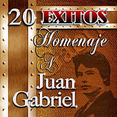 Play & Download Homenaje A Juan Gabriel by Juan Gabriel | Napster