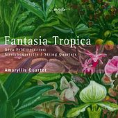 Play & Download Géza Frid: Fantasia tropica by Amaryllis Quartett | Napster