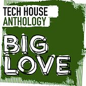 Play & Download Big Love Tech House Anthology - EP by Various Artists | Napster