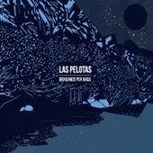 Brindando por Nada by Las Pelotas