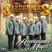 Play & Download Acaríciame Mujer by Cardenales De Nuevo León | Napster