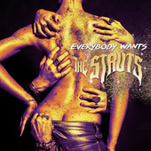 Play & Download Everybody Wants by The Struts | Napster