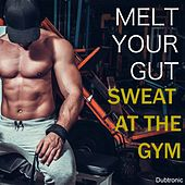Play & Download Melt Your Gut Sweat at the Gym by Various Artists | Napster
