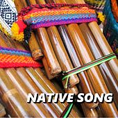 Play & Download Native Song by Native American Flute | Napster