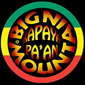 Play & Download Kapayapaan by Big Mountain | Napster