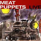 Meat Puppets Live by Meat Puppets