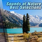 Play & Download Sounds of Nature Best Selections - EP by Various Artists | Napster
