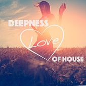 Play & Download Deepness Love of House by Various Artists | Napster