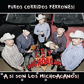Asi Son Los Michoacanos by La Ley De Michoacan