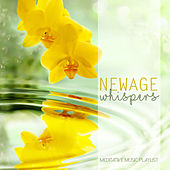 Play & Download New Age Whispers: Meditative Music Playlist by Various Artists | Napster