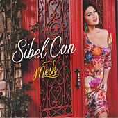 Play & Download Meşk by Sibel Can | Napster