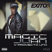 Play & Download Éxitos by Various Artists | Napster