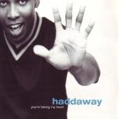 You're Taking My Heart von Haddaway