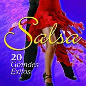 Play & Download Salsa - 20 Grandes Exitos by Various Artists | Napster