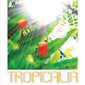Tropicalia von Blue Six