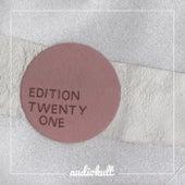 Audiokult Edition 21 von Various Artists