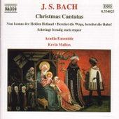Christmas Cantatas Nos. 36, 132 and 61 von Johann Sebastian Bach