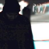 Play & Download Sleepdrone/superposition (feat. Allan Kingdom, Astronautalis, Eric Mayson, Kathleen Hanna, Hard_R, Lydia Liza, Lizzo, Nicholas L. Perez) by P.O.S (hip-hop) | Napster